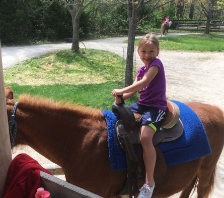 Deanna Rose Children's Farmstead. A cheap local gem perfect for the kids during the summer.