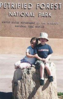 Petrified Forest. Arizona. Road tripping with the kids: are you up for the adventure? Road Trip. Summer. Travel. Kids. Family.