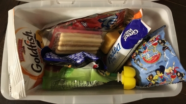 Snack boxes. Road tripping with the kids: what to bring