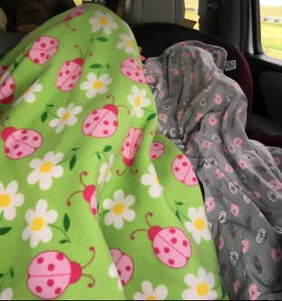 Blankets for traveling. Road tripping with the kids: what to bring