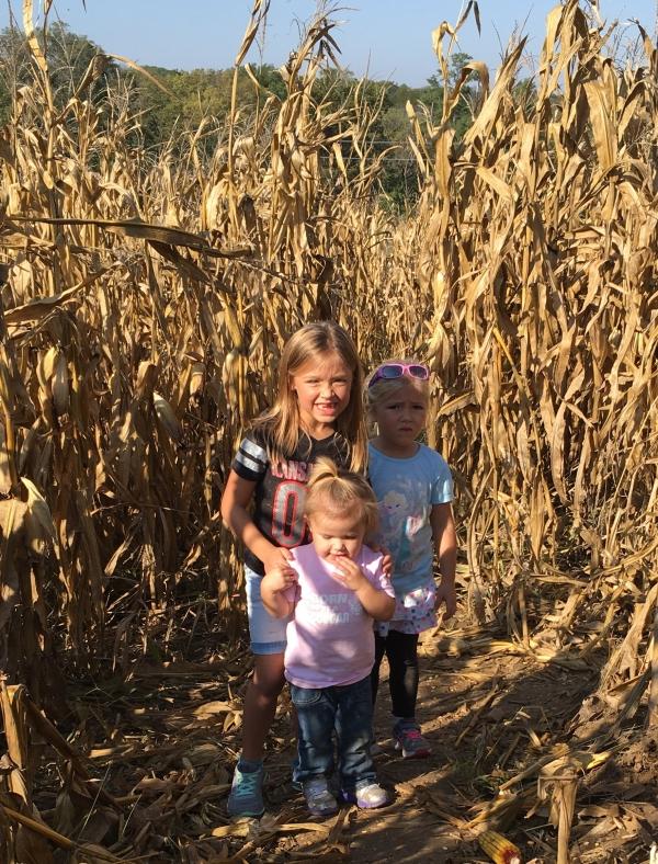 Weston Orchard and Vineyard Pumpkin Patch. Kansas City. Kids. Family. Free.