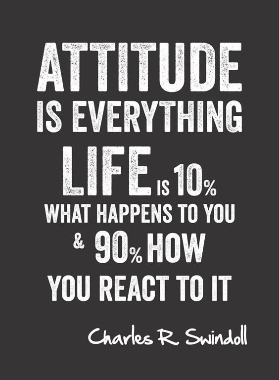 More important than facts. Attitude. Life. Sports. Leaders.